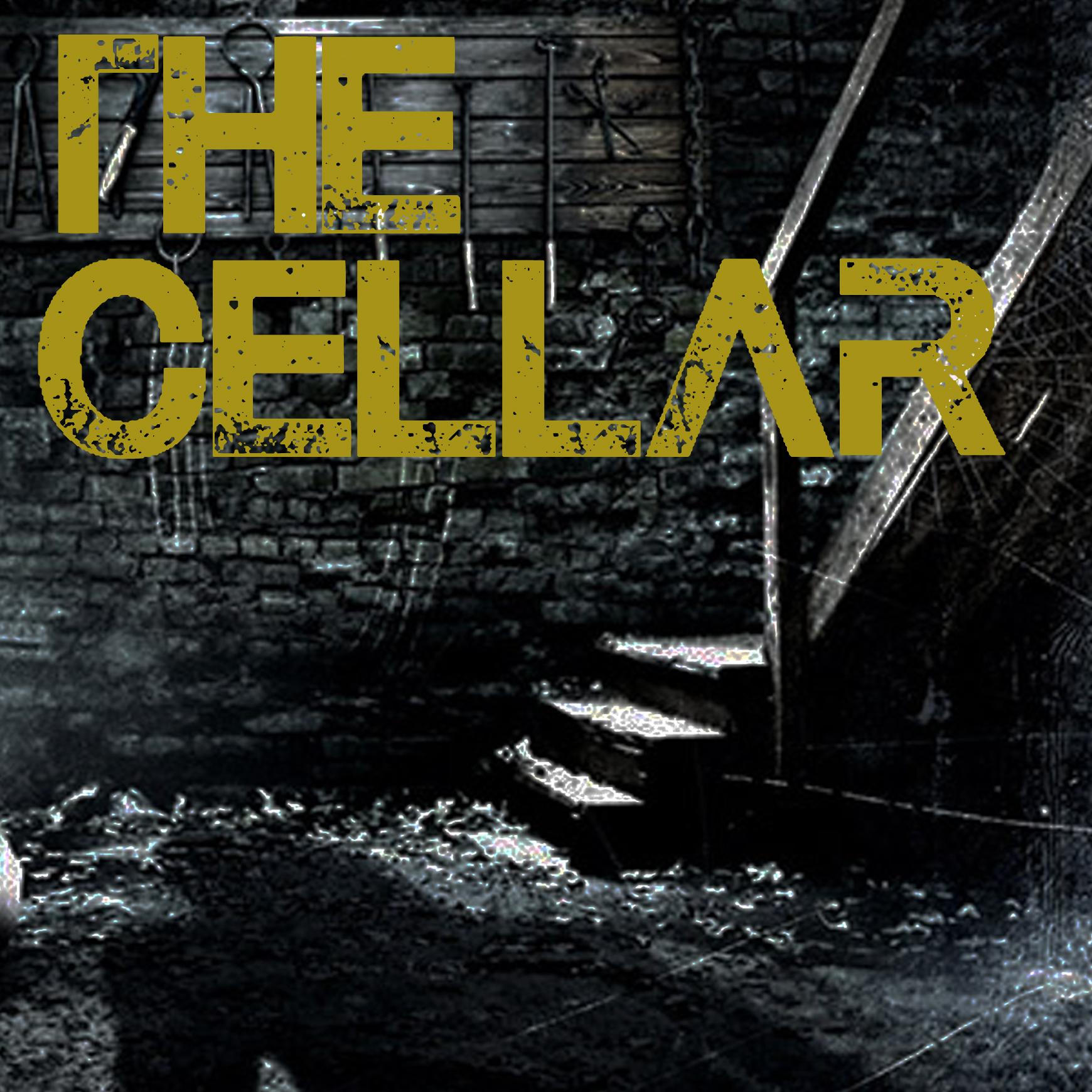 escape room victoria the cellar